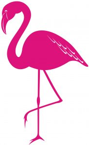 Flamingo Wunderland links